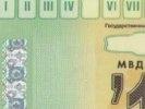 Гредин направил телеграмму руководству РСА РФ с просьбой разобраться в ситуации с талонами ТО