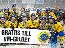 Шведы в финале чемпионата мира обыграли Россию в русский хоккей