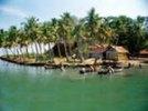Индийский депутат требует защитить Гоа от туристов из России: оккупировали целые деревни