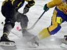 В Первоуральске пройдут соревнования по хоккею с мячом памяти Александра Мальцева