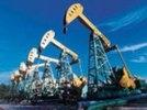 Нефтяники просят Путина расширить доступ к освоению шельфа, право на которое имеют две госкомпании