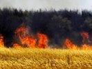 Главы муниципалитетов будут нести личную ответственность за пожарную безопасность