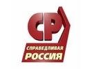 Проголосовавшие за Медведева эсеры исключены из фракции
