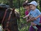 Первоуральский детский дом посетила конная полиция. Фото