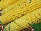 СМИ: японские ученые научились выводить радиоактивные вещества с помошью «кукурузного угля»