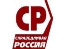 «Эсеры» внесут в Думу альтернативный законопроект о митингах