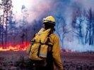 На территории ГО Первоуральск зарегистрировано 3 природных пожара