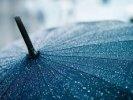 В ближайшие дни в Первоуральске сохранится нежаркая погода, пройдут дожди