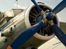 В поисках Ан-2 спасатели обследуют окрестности Каквинских печей