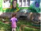 Как можно решить проблему детских садов в Первоуральске