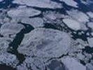 Ученые: площадь морского льда в Арктике снизилась до рекордного уровня
