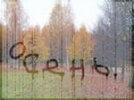 Дождь и первые заморозки. С началом сентября в Первоуральск придет осень
