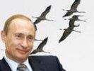Путин прокомментировал полет с журавлями: со второй попытки со мной все полетели