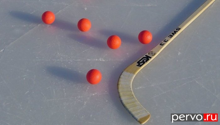 В чемпионате России 2012/2013 по хоккею с мячом, «Уральский трубник» проведет игры с тринадцатью соперниками. Список команд
