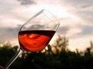 В 2012 году урожай винограда в России будет меньше на 40%, вино подорожает на 15%