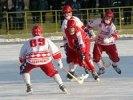 Зоркий  разгромил  Уральский Трубник  в чемпионате России по хоккею с мячом  со счетом 2:9 (0:3)