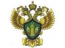 Росприроднадзор: «черный снег», выпавший в Омске, оказался золой
